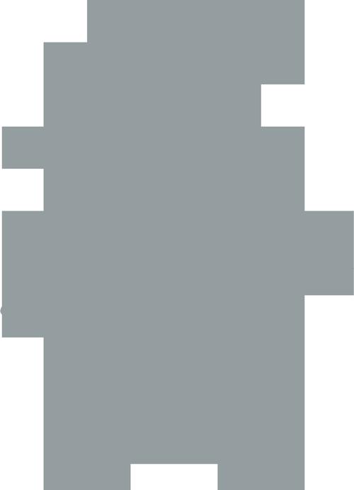 Pregel Family